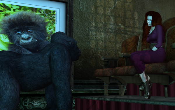 Gorillas in the Playhouse